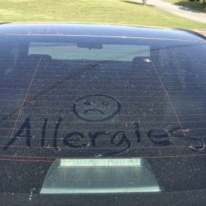 allergies feature pic